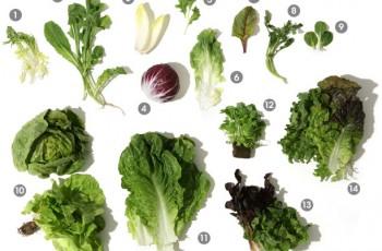 Os TOP 10 Legumes Mais Nutritivos
